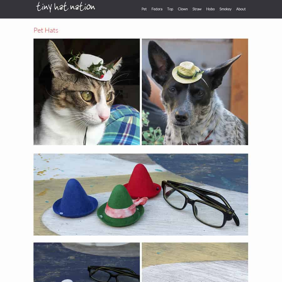 Tiny Hat nation pet hats